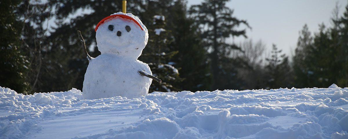 Ski week con niños, ¿sí o no?